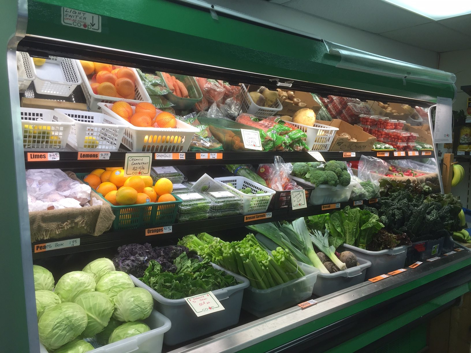 Produce cooler with organic bounty, celery, lettuce, carrots